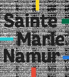 Logo Communauté Scolaire Sainte-Marie Namur - Primaires
